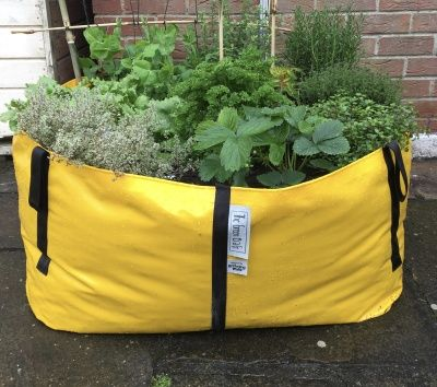 HERBS IN THE GREEN BAG